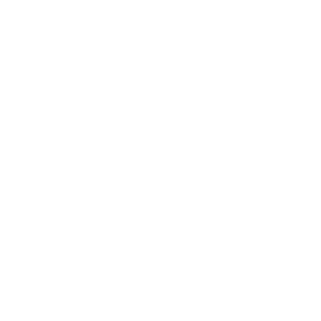 Home Service Solutions White Logo